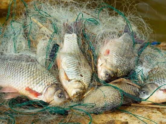 В калмыцком районе пресечена незаконная ловля рыбы