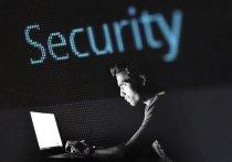 Кемеровчанин устроил хакерские атаки на сайт правительства Мордовии и остался на свободе