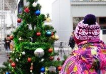 Очень скоро стартуют новогодние елки для детей