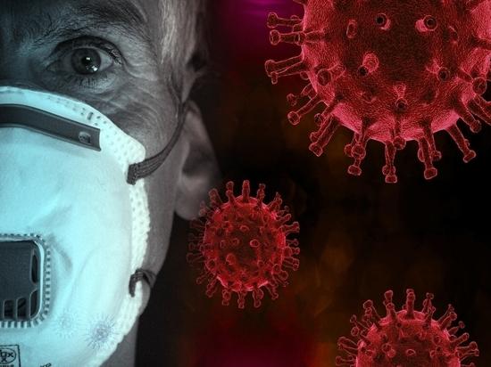 Хроники коронавируса в Тверской области: главное к 27 ноября