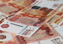 Предложенная ранее в Минэкономразвития схема по начислению выплат на детей является рискованной из-за высокого риска мошеннических действий