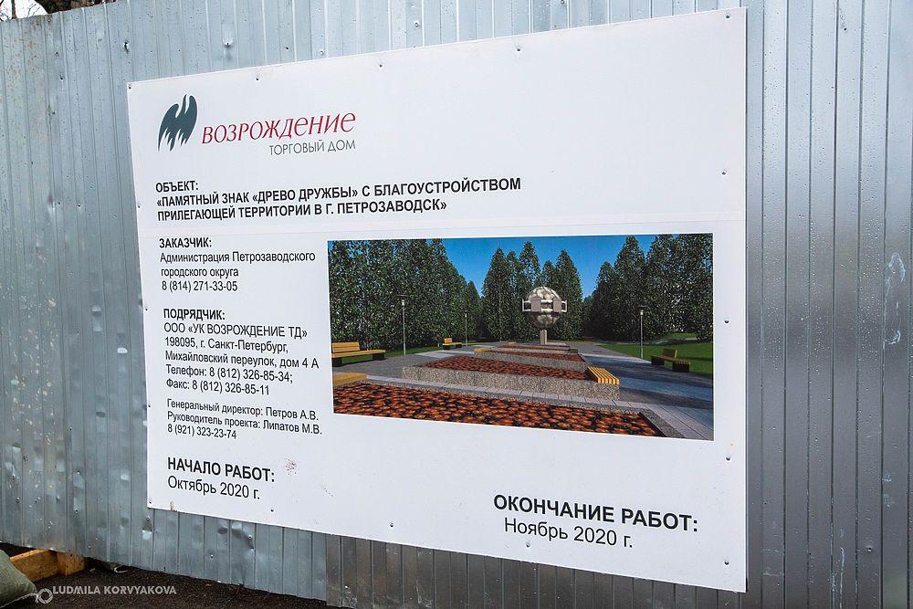 «Дерево дружбы» «выросло» неподалеку от набережной в Петрозаводске
