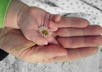 День матери пройдет дистанционно в Хабаровском крае