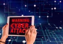 Число киберпреступлений в Петербурге выросло на 582%