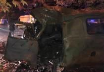 В Сочи водитель грузовика погиб, врезавшись в дерево