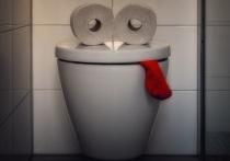 Туалет для Калуги – мем или будущий брэнд