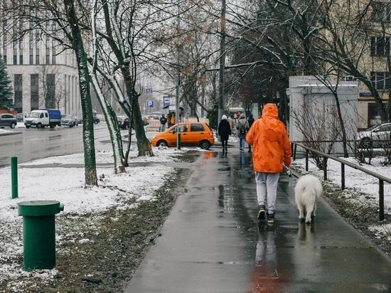 Названа дата прихода зимней погоды в Москву