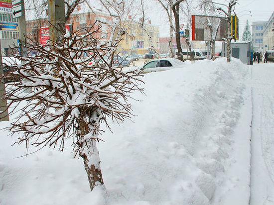 Новая неделя начнется в Омске с ночных морозов