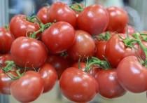 В Росстате рассказали, какие регионы РФ недоедают овощей и фруктов