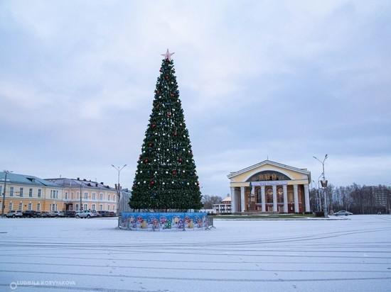 Шары и гирлянда: «главную» новогоднюю ель Петрозаводска готовят к празднику