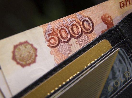 Часть россиян в декабре получит две пенсии, заявила зампредседателя Комитета Совета Федерации по социальной политике Елена Бибикова