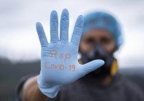Представители оперативного штаба ФосАгро по борьбе с распространением COVID-19 выступили в эфире телеканала «Россия 24», и поделились своим мнением по нескольким аспектам противодействия инфекции