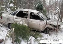 В Марий Эл при опрокидывании авто пострадали три человека