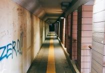 В Алуште грабитель-рецидивист орудовал в подземном переходе