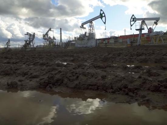 По словам президента РФ Владимира Путина, в течение ближайших пяти лет спрос на нефть будет расти только на 1%, затем начнется снижение на 0,1% в год