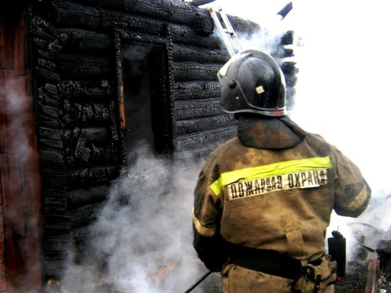 Три сарая и теплица сгорели при пожаре в Чебоксарах