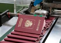 Общественники предложили убрать лишнюю графу из паспорта гражданина РФ