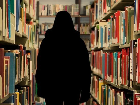 Молодой житель Карелии хотел поправить материальное положение за счет библиотеки