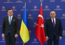 Турция поддержала Украину в ее намерении вернуть полуостров Крым