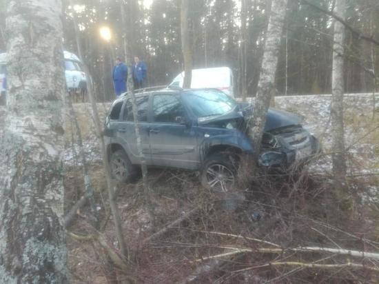 В Рязанской области водитель улетел в кювет и врезался в дерево