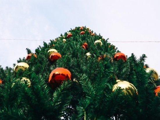 В Волгограде обнародовали программу празднования Нового года