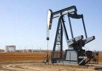 Министры энергетики стран ОПЕК+ договорились об увеличении добычи нефти с 2021 года