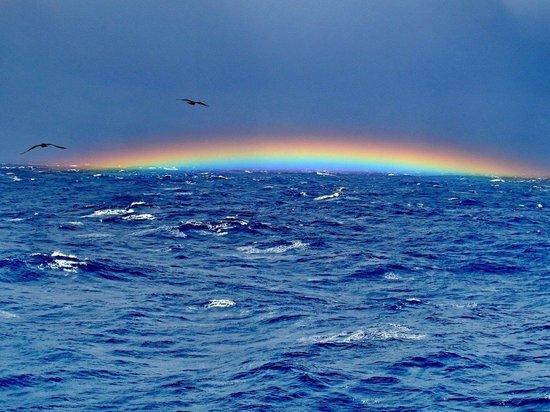 Ученый раскрыл тайну пропажи самолетов в Бермудском треугольнике