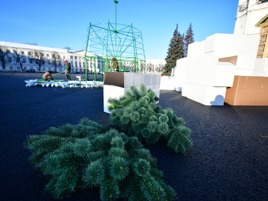В Ярославле установили главную елку