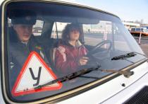 Порядок обмена информацией между автошколами и ГИБДД изменится в ближайшем будущем