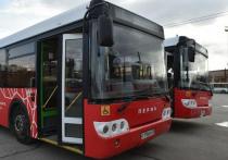 В Перми может стать меньше автобусов