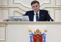Спикер ЗакСа Петербурга прокомментировал слухи об обыске в доме дочки