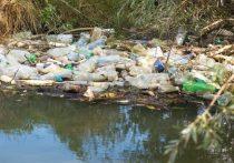 Башкирия стала лучшей по очистке от мусора берегов водоемов