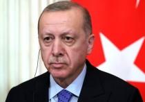 Эксперт оценил воинственные заявления Эрдогана по Армении