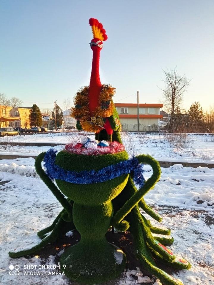 Животных в Оленинском районе украсили к Новому году
