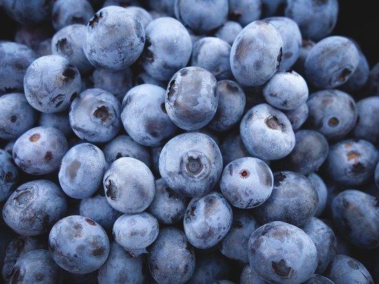 Названы 10 самых полезных продуктов для здоровья человека