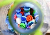 В 2019 году в рамках национального проекта «Экология» начались масштабные работы по проблеме утилизации отходов