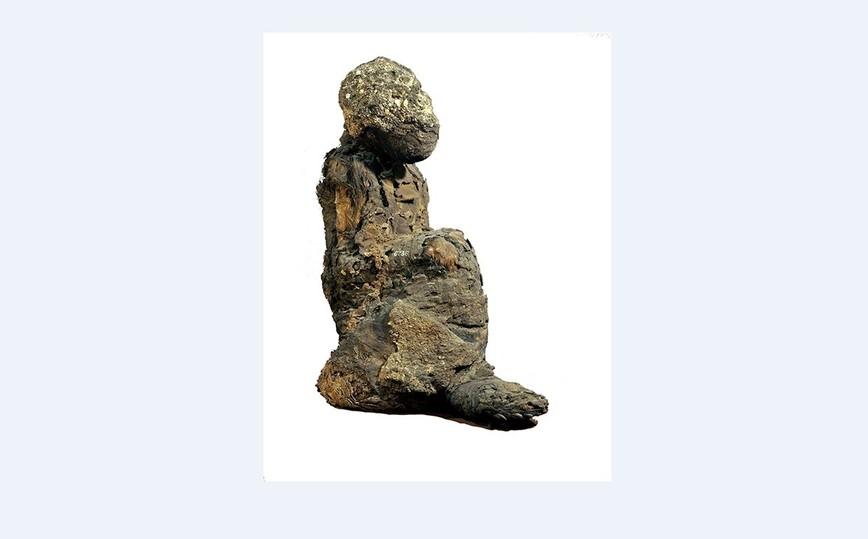 Мумифицированные павианы помогли в поисках таинственной земли Пунт