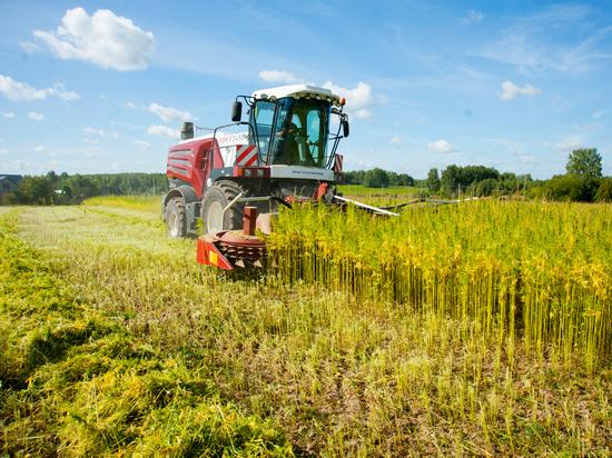 Ивановская область: территория растущего земледелия