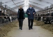 Открылся новый корпус молочной фермы одного из предприятий Серпухова