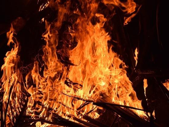На пожаре в поселке Красный Коммунар погиб пенсионер