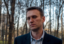 Спикер Кремля Дмитрий Песков сообщил журналистам, что у президента и сотрудников его администрации не было времени ознакомиться с видео разговора Навального с человеком, которого он обвиняет в причастности к своему отравлению
