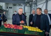 Президент Игорь Додон промульгировал закон о внутренней торговле