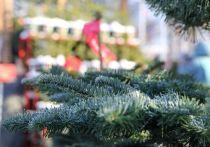 С каждым годом все больше людей отдают предпочтение искусственным елкам
