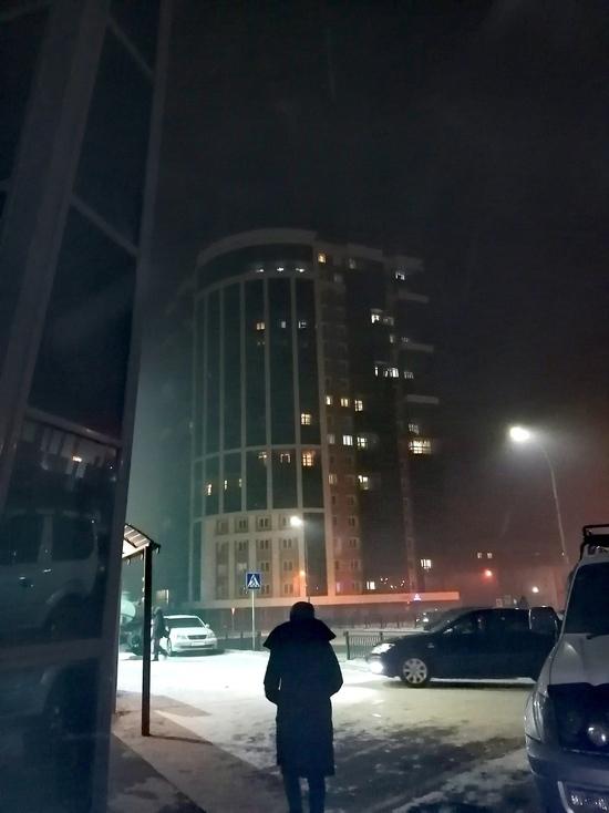 Бурприроднадзор сообщил о высокой концентрации бензапирена в Улан-Удэ