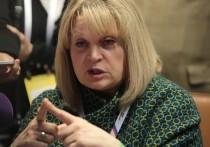 Памфилова: всероссийские выборы онлайн будут внедрять к 2024 году