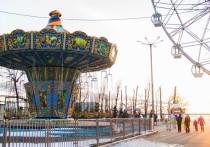 Крысиные истории: скандалы со счастливым концом в Хабаровске