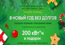 Забайкальцы еще 4 дня могут участвовать в акции «В Новый год без долгов!»