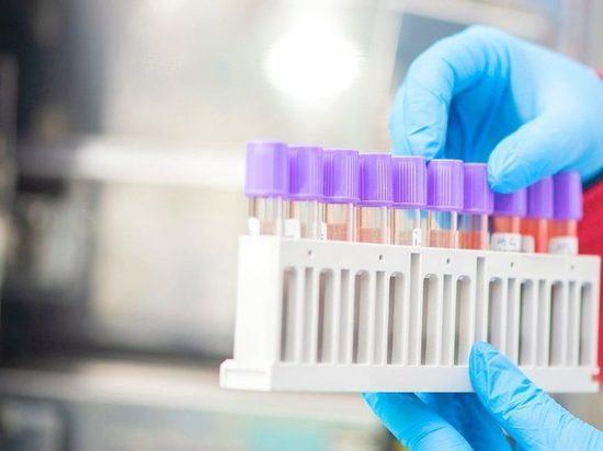 Немецкие эксперты-вирусологи рассказали, когда появится тест на мутированный коронавирус, обнаруженный в Англии