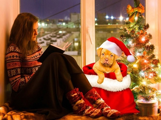 Медики Германии предупреждают: как можно меньше контактов на Рождество