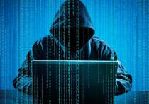 Проблема киберпреступности приобретает все больший размах, и не только в Прикамье
